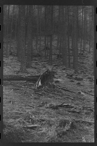 190919_Ilford HP5 400 35-10