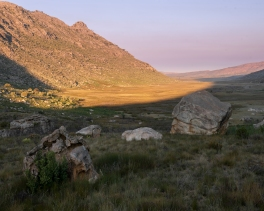 Western Cape-5