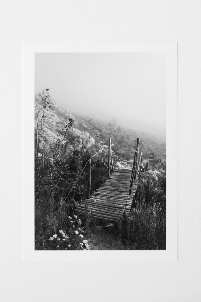 bridge in mist south africa print