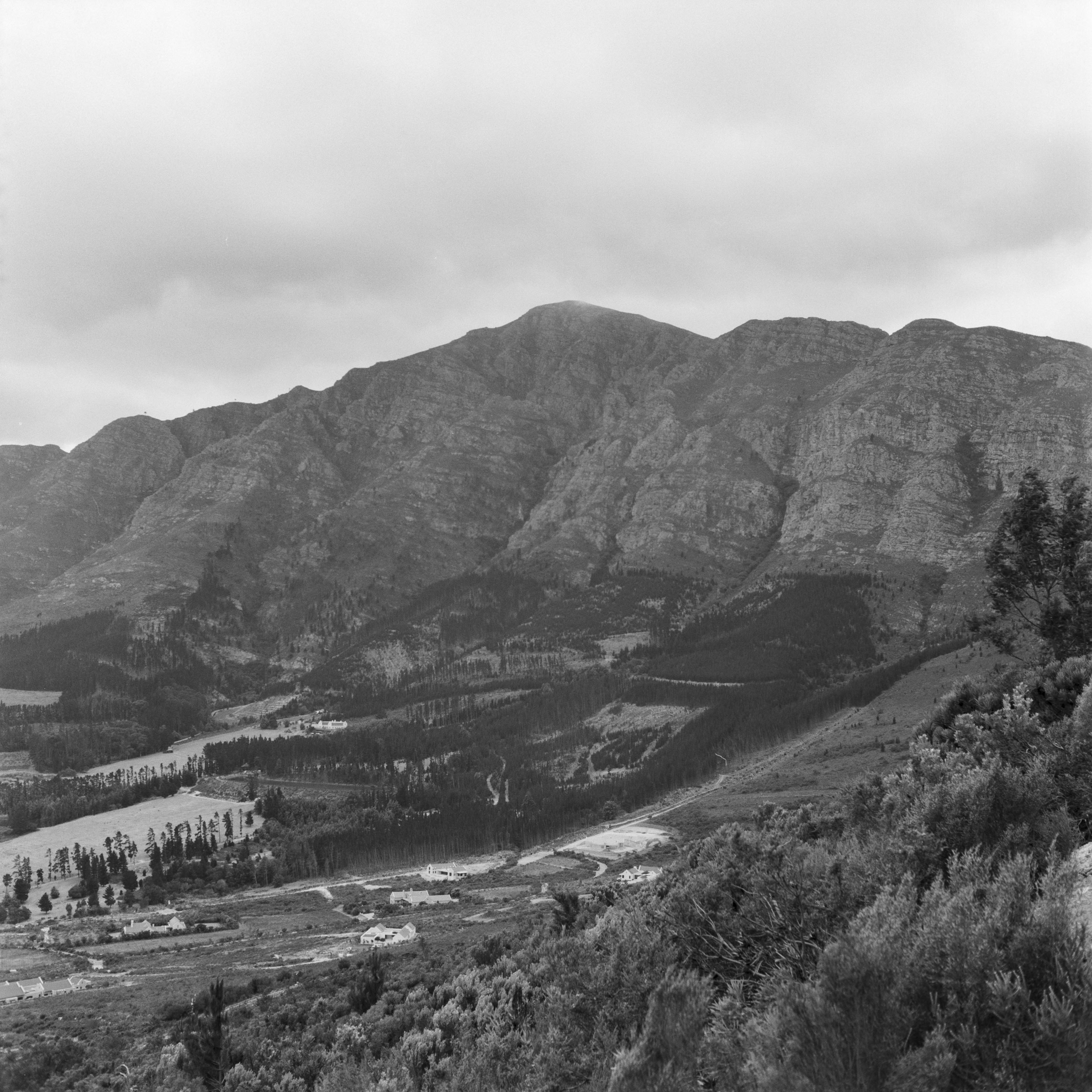 Mountains trees south africa landscape photography